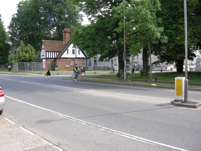 Grove lodge with cyclist